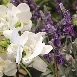 Alle kunstige blomster