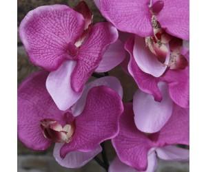 Orkidégren Violet Kunstig
